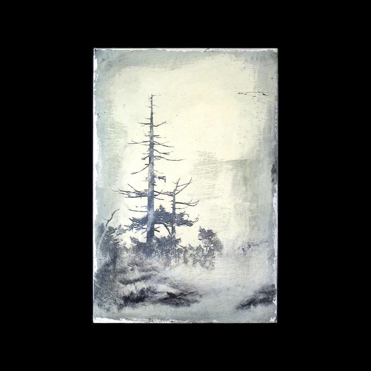 untitled (imagined forest series)