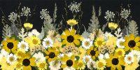 Black-Eye Susan Fleur Garden