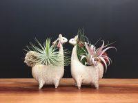 Cream Llama Vase