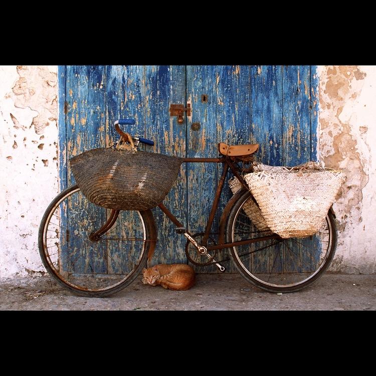 """""""Watchful Eye"""" -Morocco"""